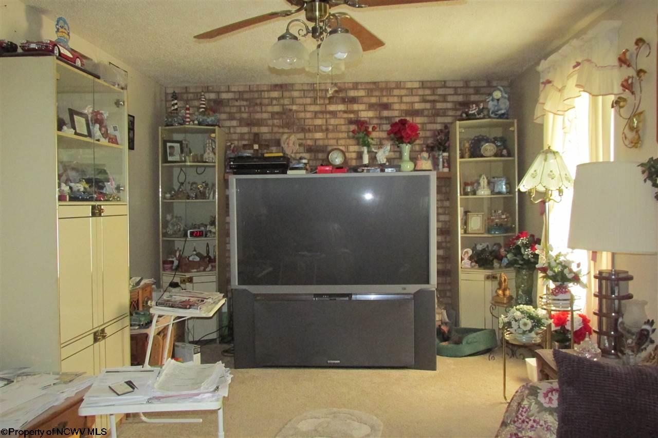 4220 MASON DIXON HIGHWAY, CORE, WV 26541  Photo 6