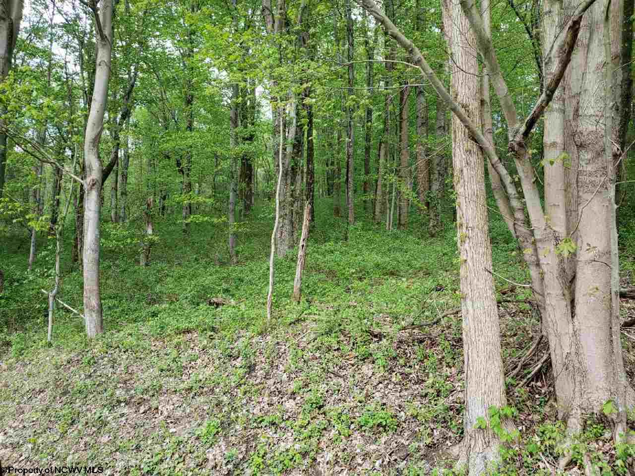 STERLING HTS. PARCELS - TRACT 2 ADDITION, FAIRMONT, WV 26554