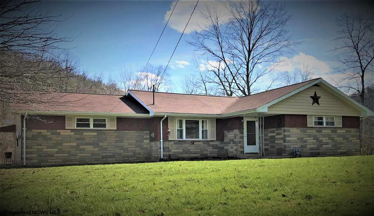 255 BUFFALO BRINK ROAD, MANNINGTON, WV 26582  Photo 1