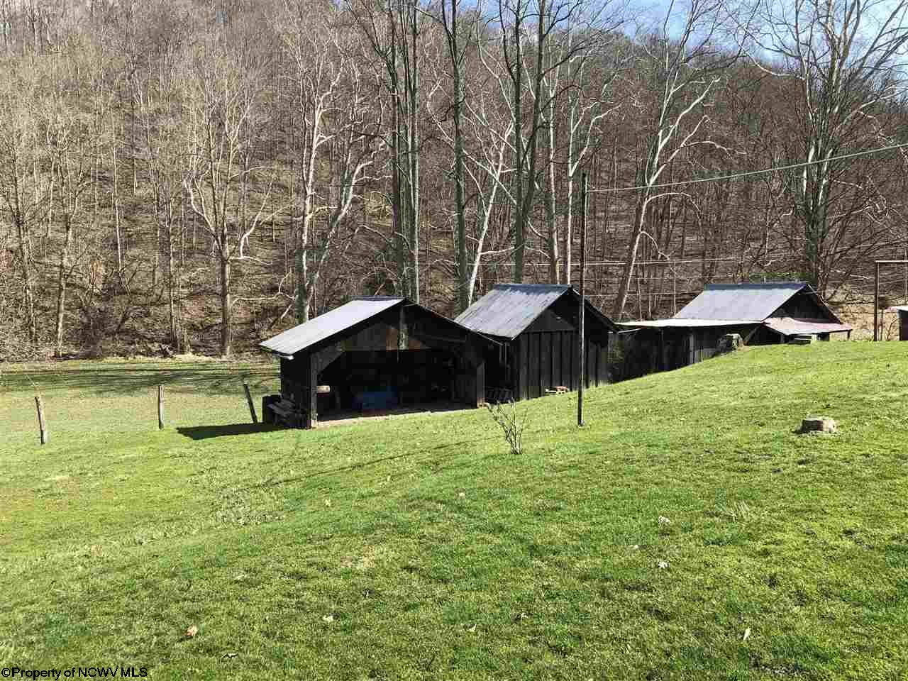 255 BUFFALO BRINK ROAD, MANNINGTON, WV 26582  Photo 4