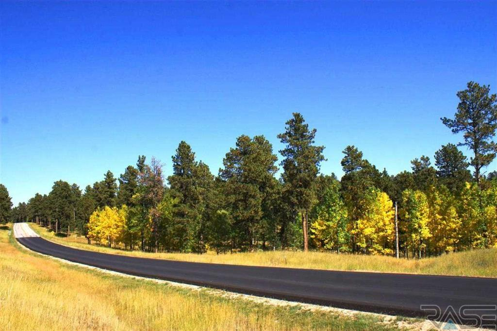 Lot 2 Blk 1 Springwood Ct, Lead, SD 57754