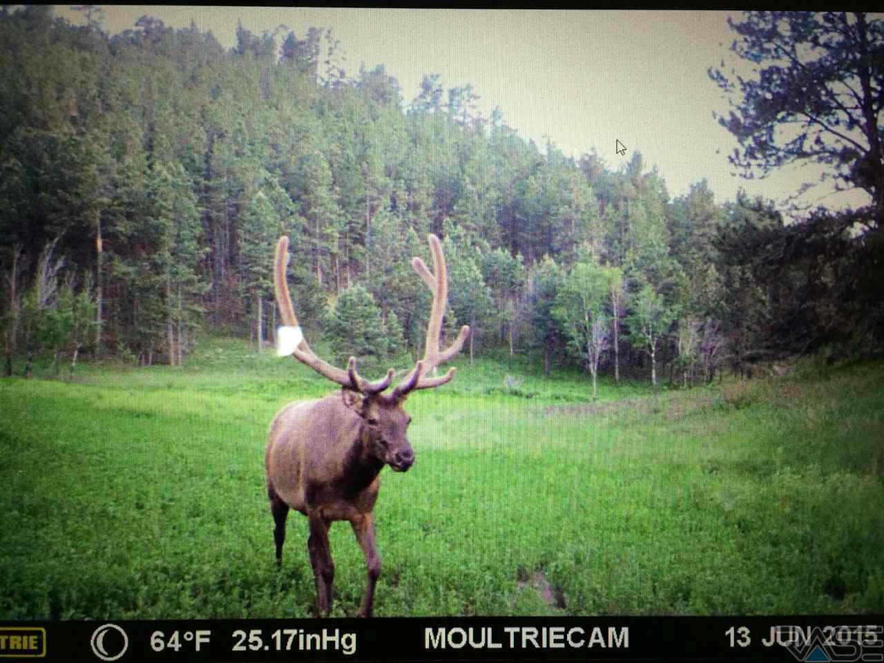 TBD Beaver Creek Rd, Pringle, SD 57773
