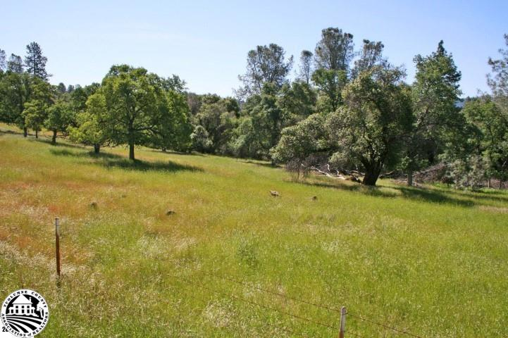 Parcel 3 Long Gulch Ranch, Groveland, CA 95321