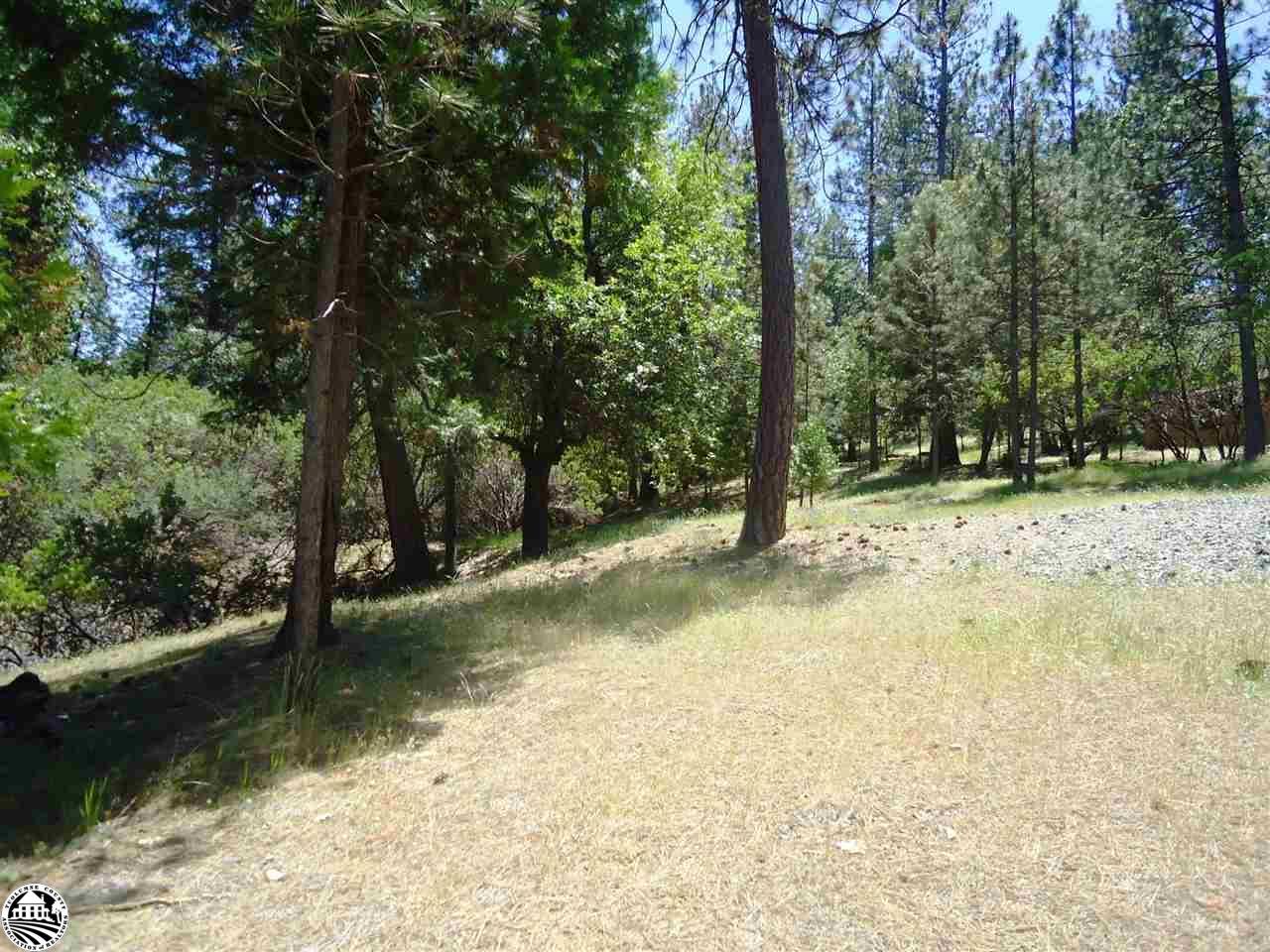 12088 Breckenridge Road, Groveland, CA 95321