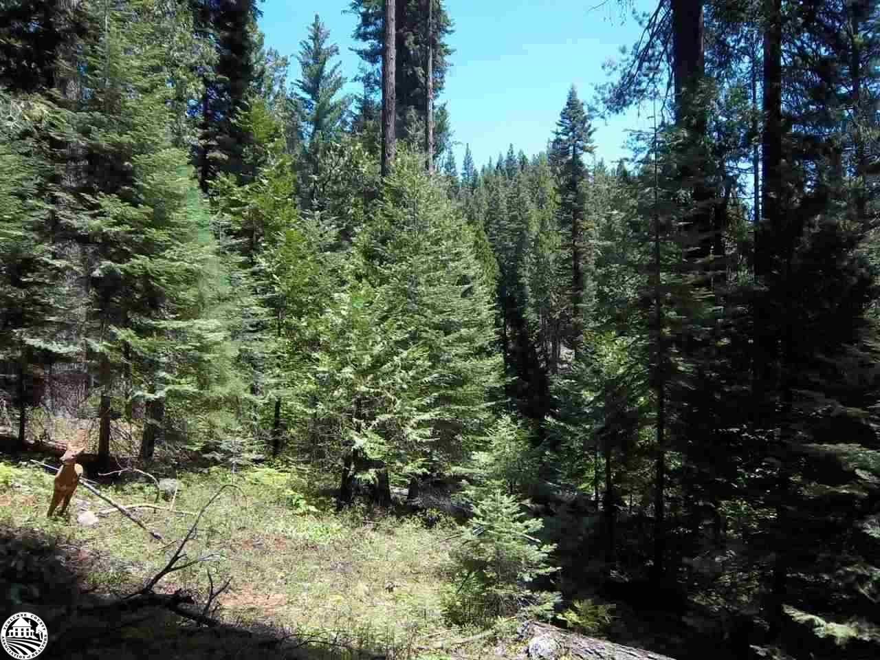 25777 Long Barn Sugar Pine Road, Long Barn, CA 95335