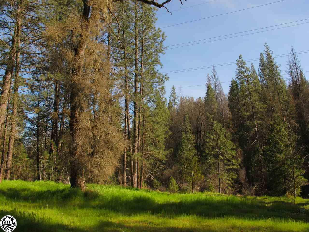 06664006 Big Creek Shaft Rd, Groveland, CA 95321