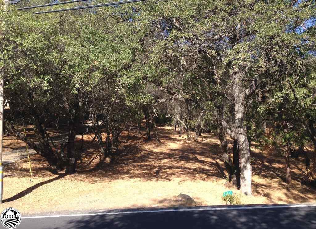 5-213 Ferretti Road, Groveland, CA 95321