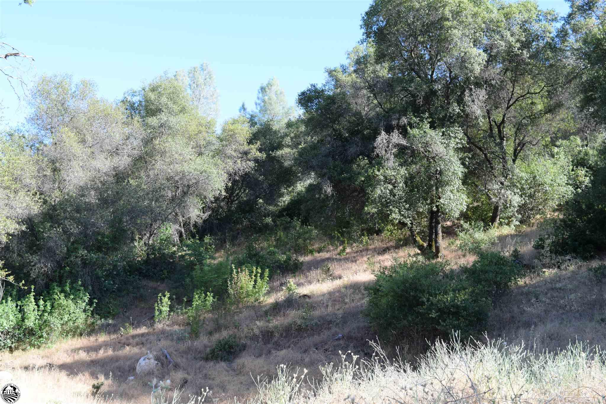 000 Highway 49 4 Parcels, Sonora, CA 95370