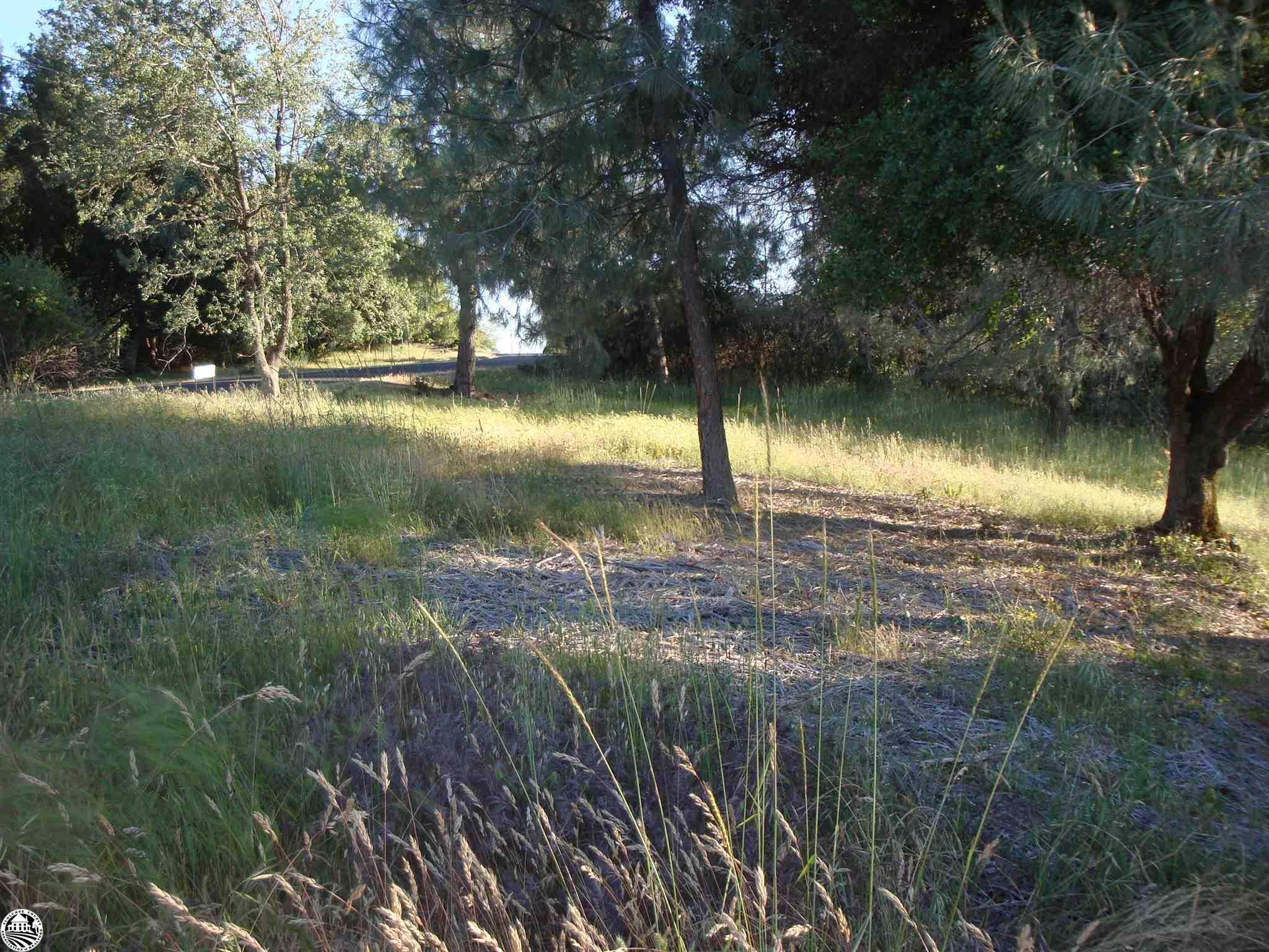 Property Photo 02