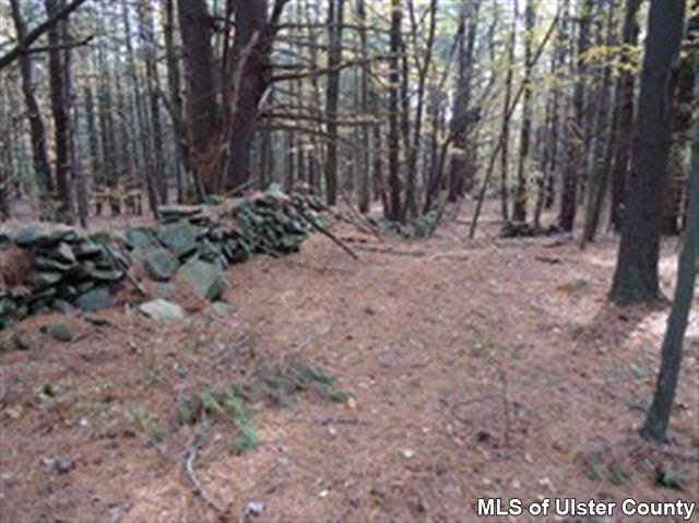 Additional photo for property listing at LOT 7 HANNA LN. (OFF CTY. RT.3) Olivebridge, New York United States