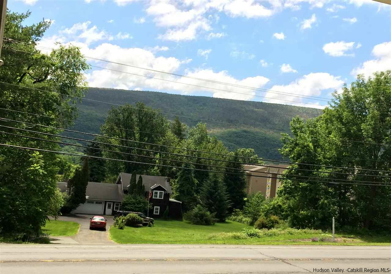 Additional photo for property listing at 7880 Rt 209 7880 Rt 209 Napanoch, New York 12458 United States