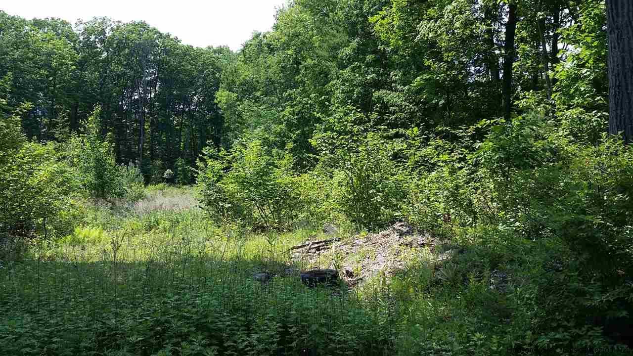 OOC - GREENE NY - ID: 20162877