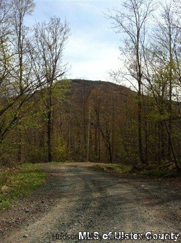 Camp Schoharie Road, Hunter, NY 12442