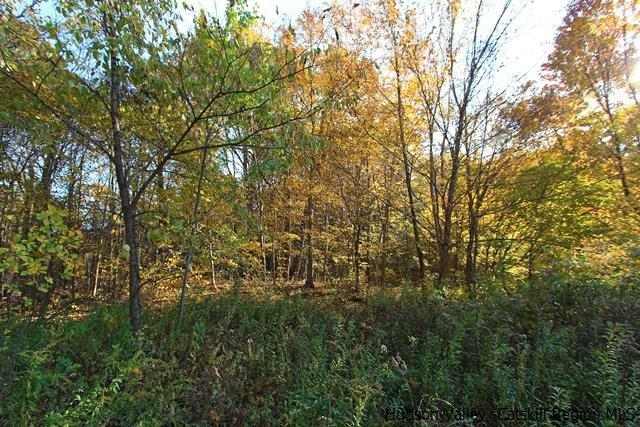 Additional photo for property listing at Cold Spring Road Cold Spring Road Clinton Corners, New York 12514 United States