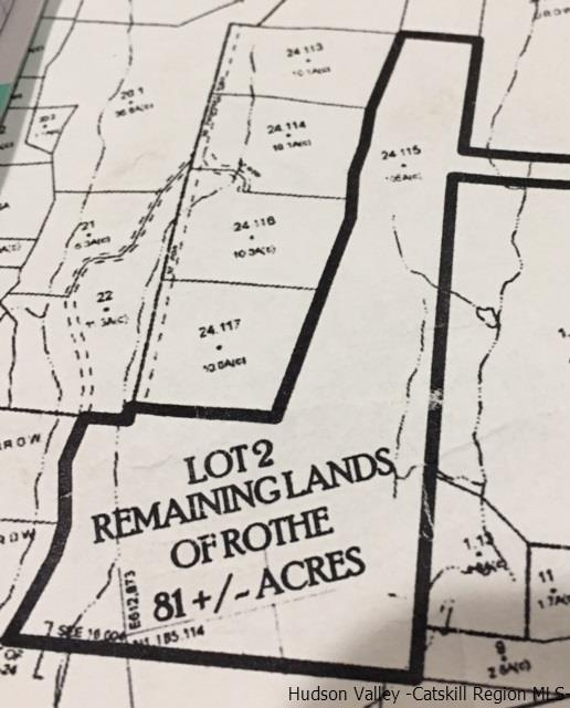 SURVEY MAP SHOWING THE 81 ACRES