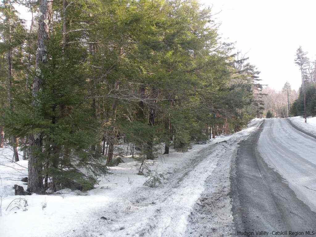 Elka Park Road, Hunter, NY 12427