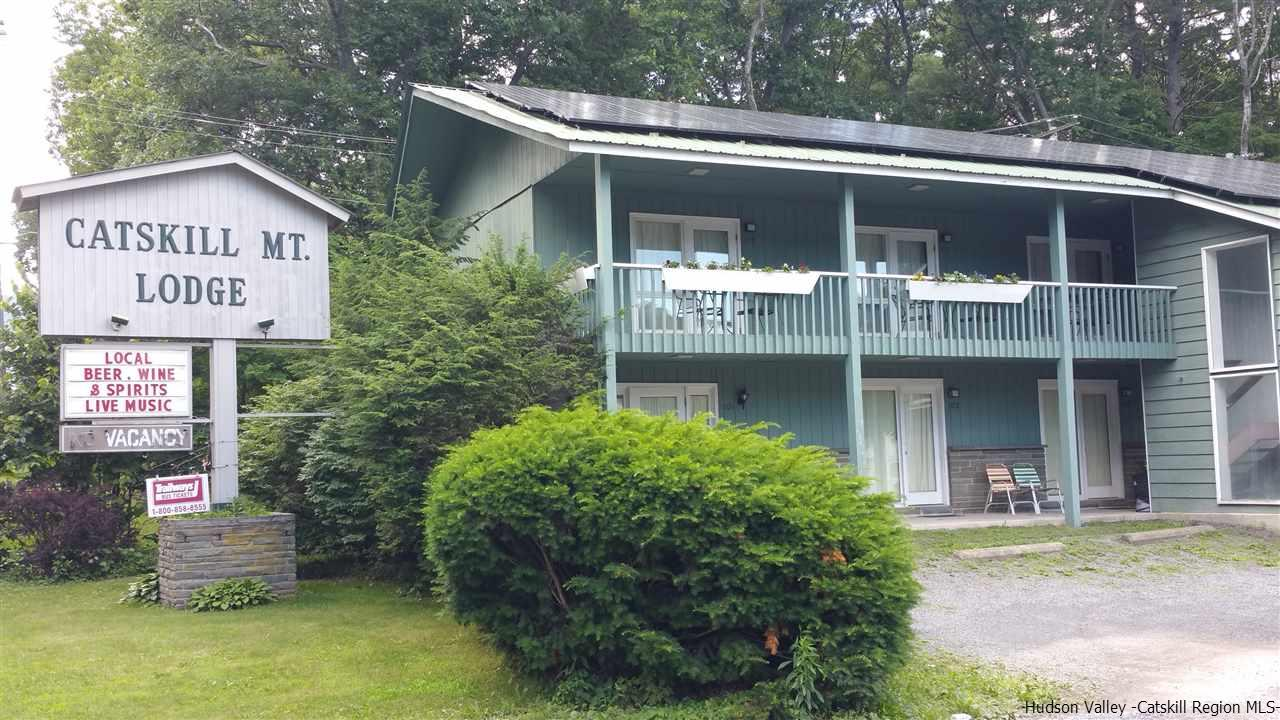 334 Route 32A Route, Palenville, NY 12463