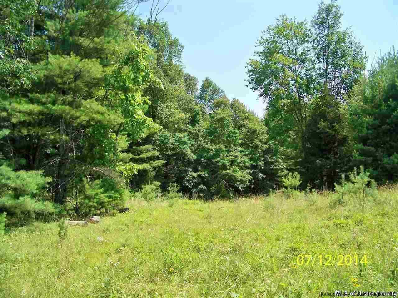 Single Family Home for Sale at Lot 4 Highwoods Road Lot 4 Highwoods Road Saugerties, New York 12477 United States