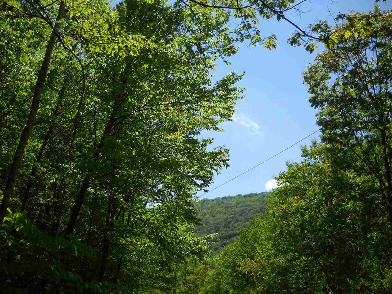 Additional photo for property listing at TBD Route 28 TBD Route 28 Big Indian, New York 12480 United States