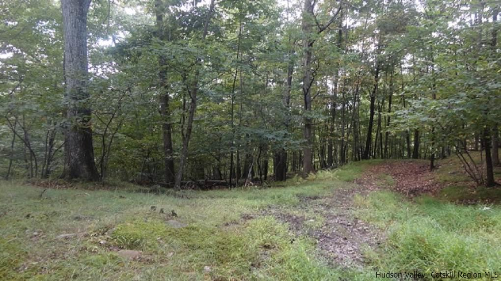 Additional photo for property listing at 91 Vista Maria Road 91 Vista Maria Road Cragsmoor, New York 12420 United States
