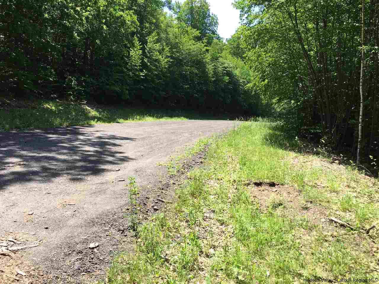Additional photo for property listing at TBD Saint Kathrin Drive TBD Saint Kathrin Drive Pine Hill, New York 12465 United States