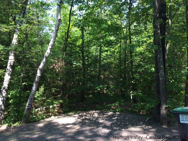 Additional photo for property listing at TBD Lot #2 Winne Road TBD Lot #2 Winne Road Mount Tremper, New York 12457 United States