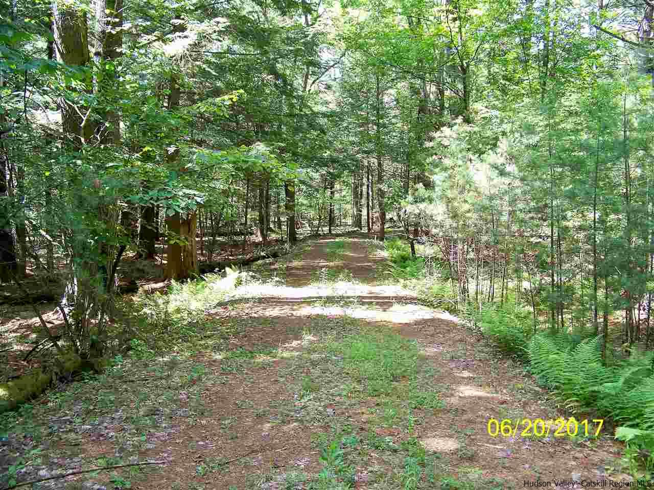 Additional photo for property listing at TBD MT. LAUREL Road TBD MT. LAUREL Road Kerhonkson, New York 12446 United States
