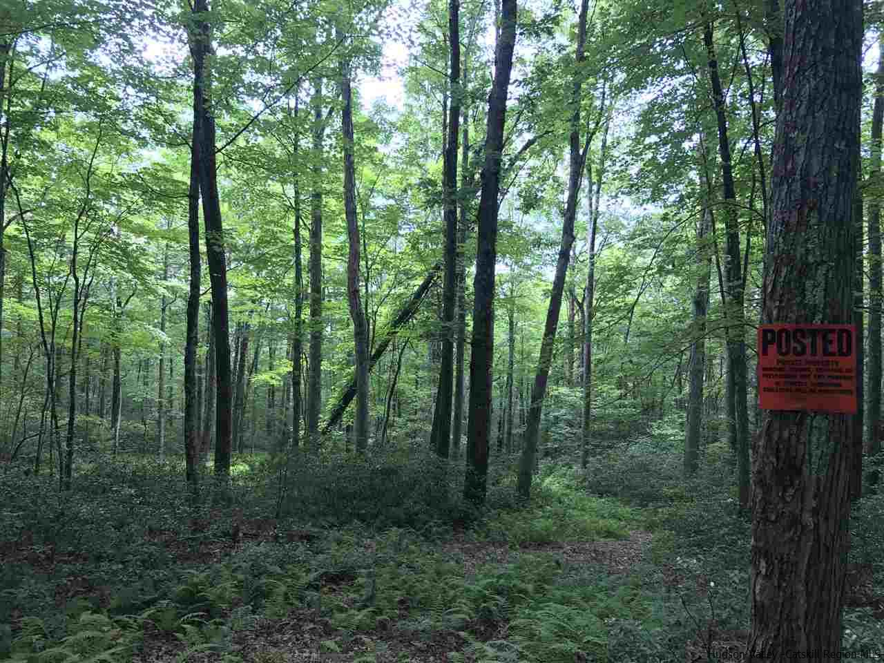 Additional photo for property listing at TBD Bennett TBD Bennett Napanoch, New York 12458 United States