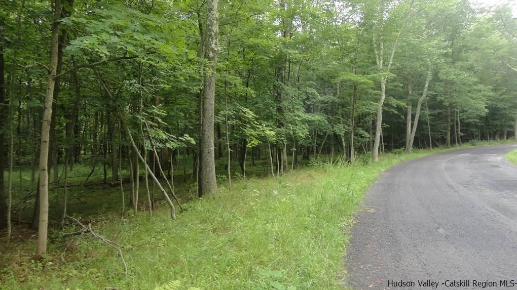 Additional photo for property listing at Otis road Otis road Cragsmoor, New York 12420 United States