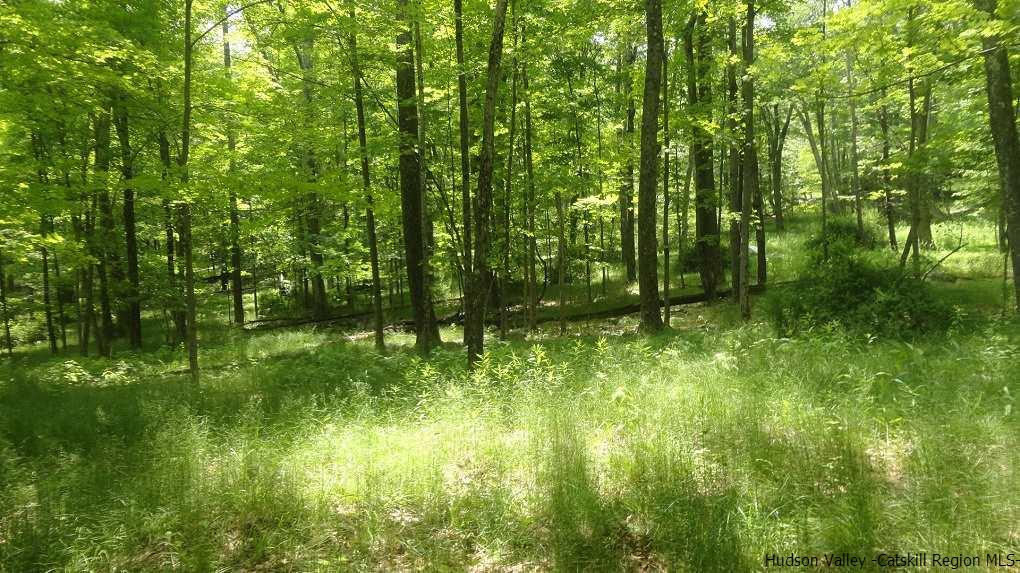 Additional photo for property listing at Old Inn Road Old Inn Road Cragsmoor, New York 12420 United States