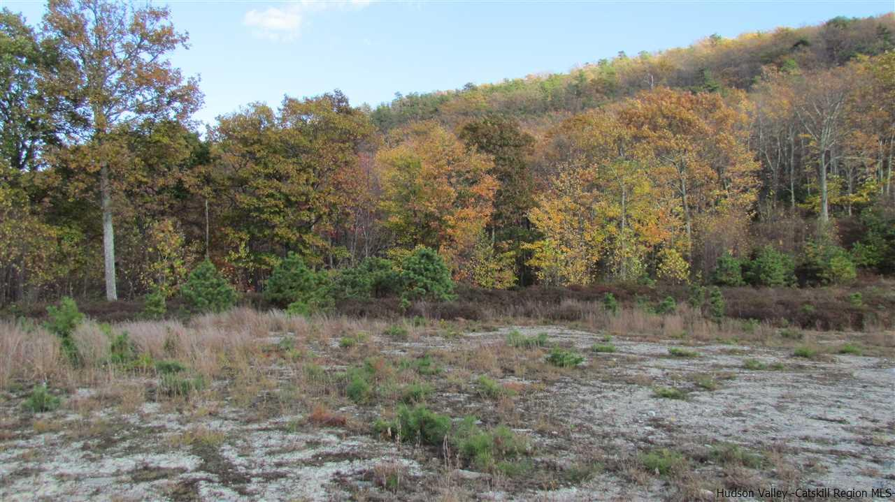 Additional photo for property listing at 4100 Route 52 4100 Route 52 Wawarsing, New York 12428 United States