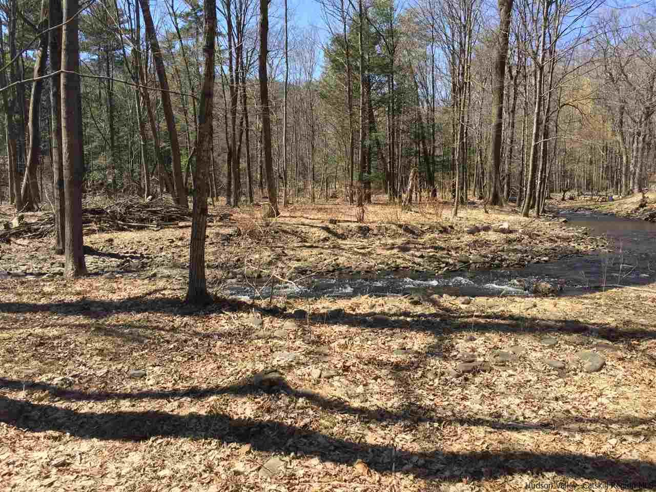 Additional photo for property listing at TBD Park Place TBD Park Place Saugerties, New York 12477 United States