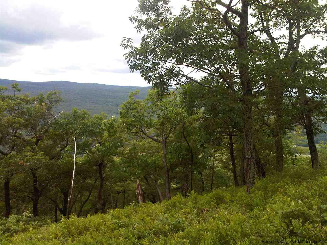 Additional photo for property listing at Route 52 Route 52 Cragsmoor, New York 12428 United States