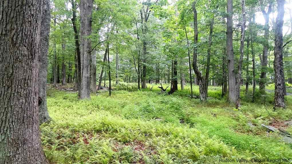Additional photo for property listing at Inn Road Inn Road Cragsmoor, New York 12420 United States