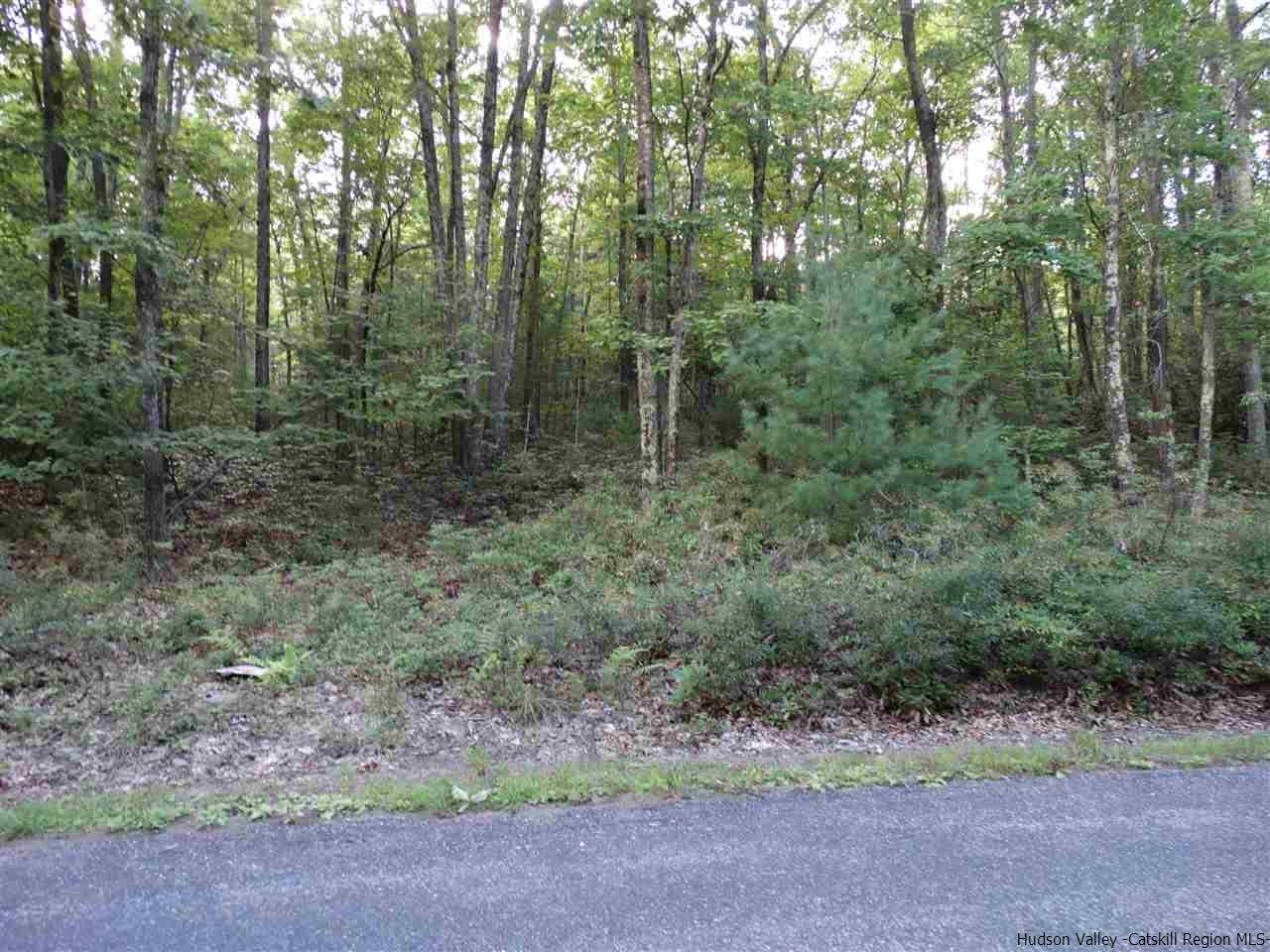Single Family Home for Sale at Lot #2 Bennett Road Lot #2 Bennett Road Napanoch, New York 12458 United States
