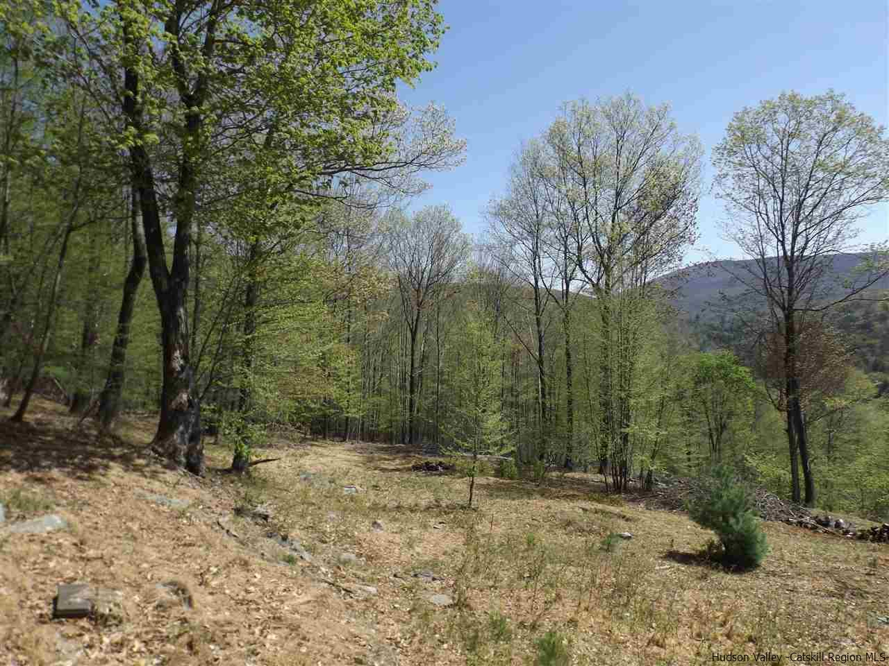 Additional photo for property listing at TBD Lions Way TBD Lions Way Woodstock, New York 12498 United States