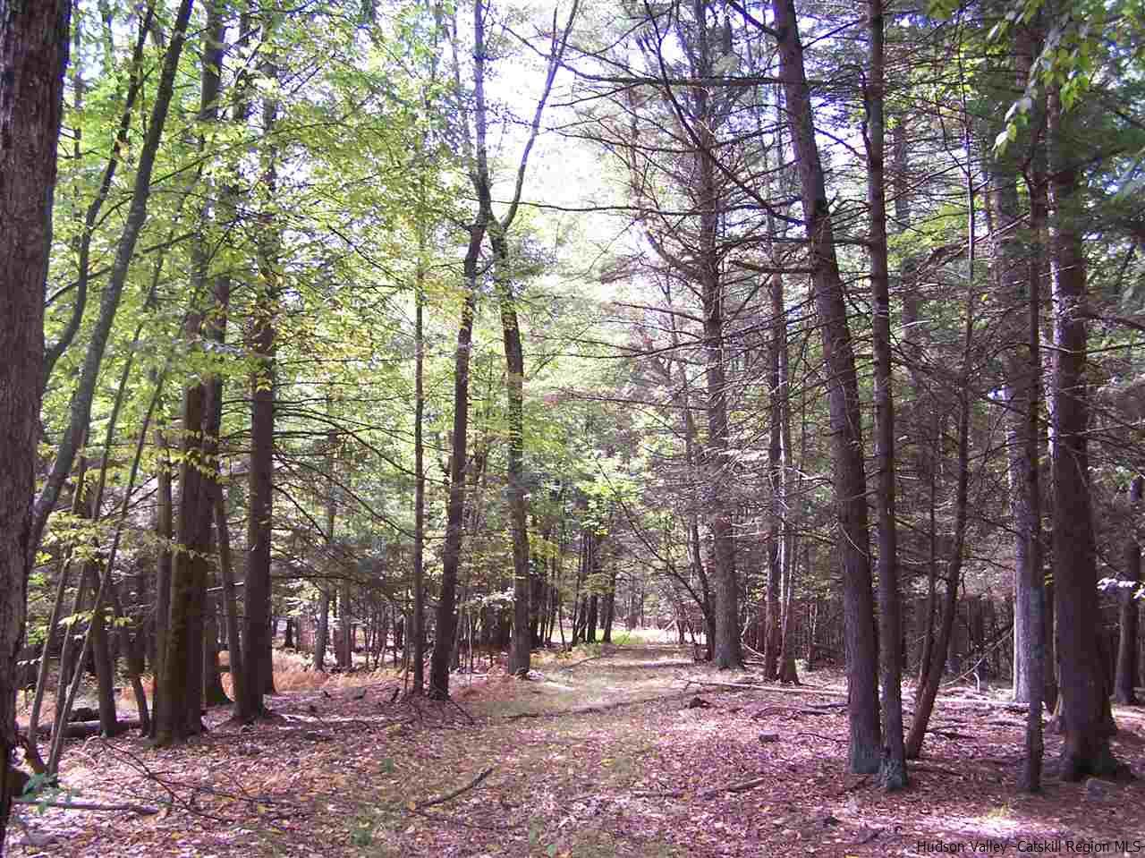 Additional photo for property listing at TBD Eagles Nest Road TBD Eagles Nest Road Hurley, New York 12443 United States