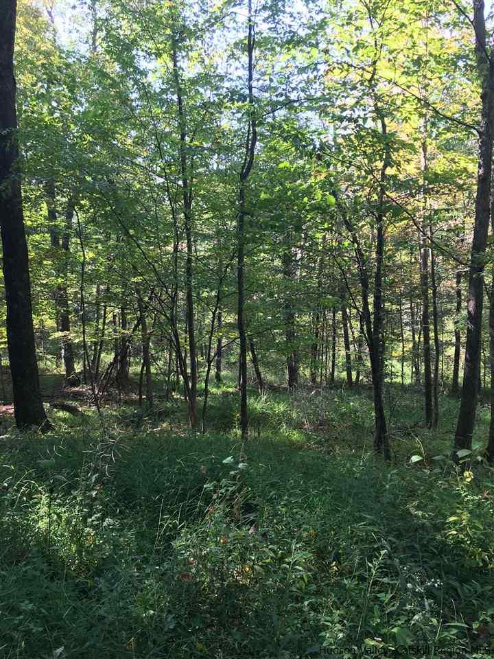 Single Family Home for Sale at 221 Tow Path Road 221 Tow Path Road Accord, New York 12404 United States