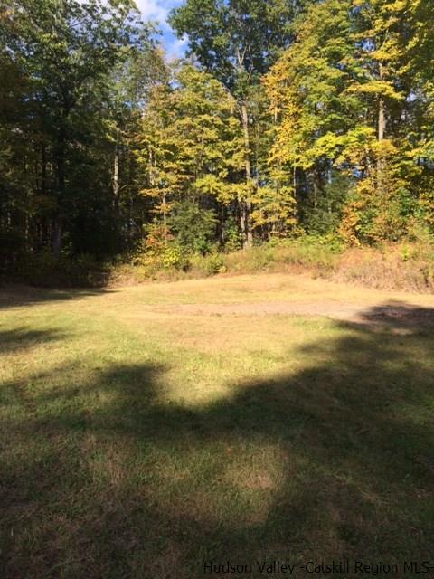 Additional photo for property listing at 248 Potter Hill Road 248 Potter Hill Road Saugerties, New York 12477 United States