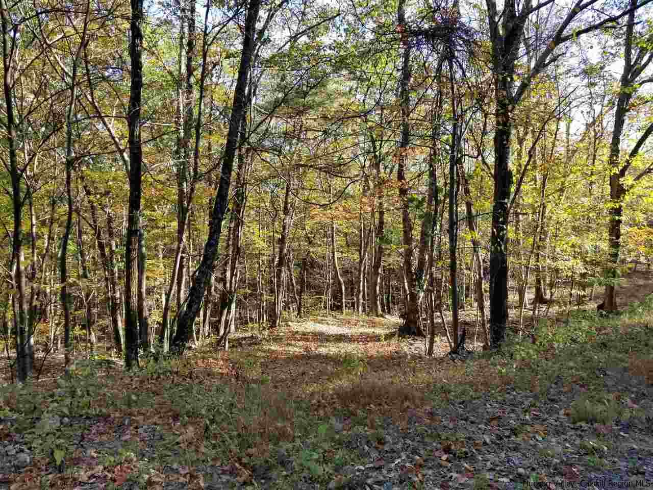 Additional photo for property listing at TBD County Road 3 TBD County Road 3 Olivebridge, New York 12461 United States