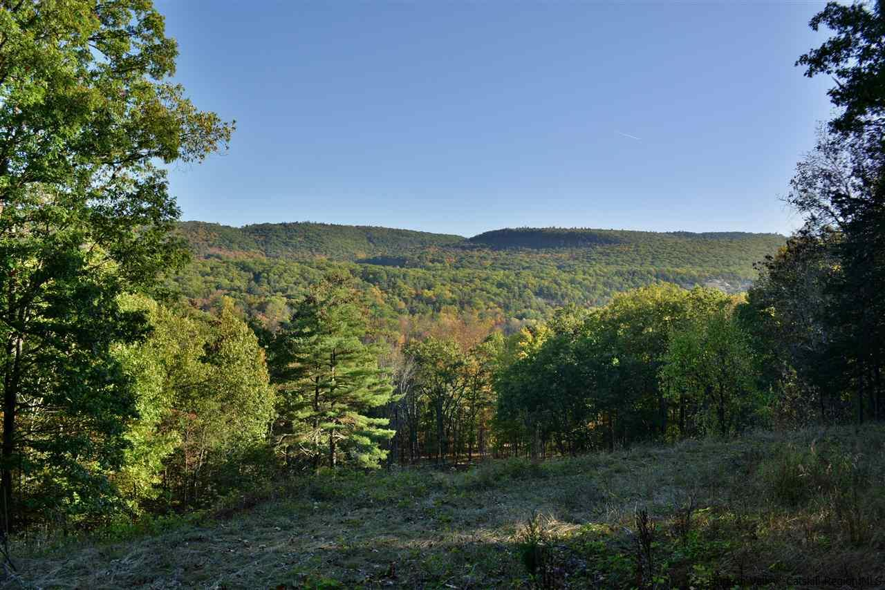 Single Family Home for Sale at 353 Cedar Hill Road 353 Cedar Hill Road High Falls, New York 12440 United States