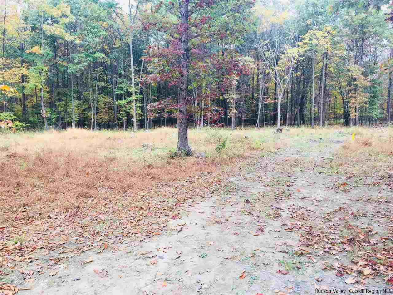 Additional photo for property listing at 87 Stella 87 Stella Gardiner, New York 12525 United States