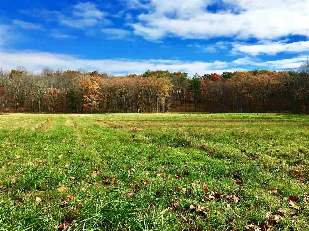 Additional photo for property listing at 161 Boice Mill Road 161 Boice Mill Road Kerhonkson, New York 12446 United States
