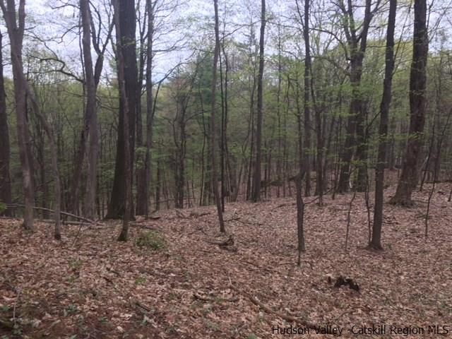 Additional photo for property listing at TBD North Street TBD North Street Saugerties, New York 12477 United States