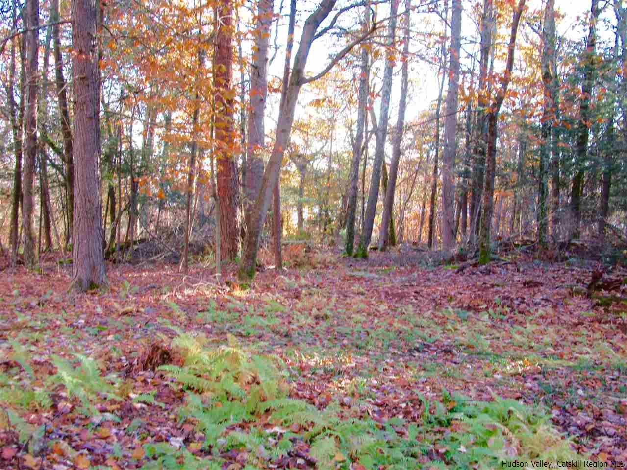 Additional photo for property listing at Lot 1AA Valley View Way Lot 1AA Valley View Way Lake Hill, New York 12498 United States