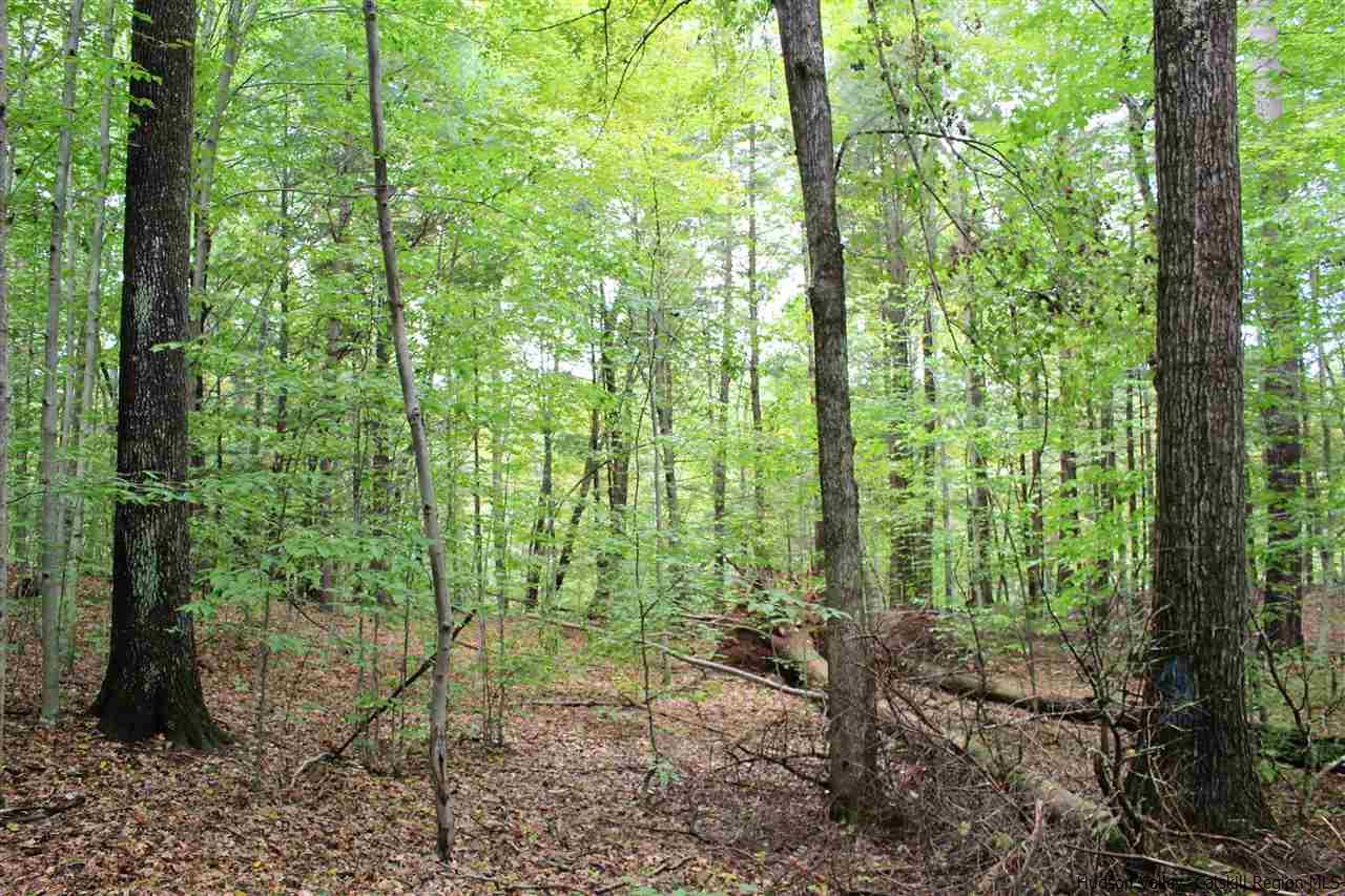 Additional photo for property listing at TBD Old Queens Highway TBD Old Queens Highway Kerhonkson, New York 12446 United States