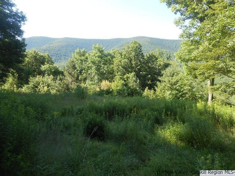 Additional photo for property listing at 60 Overlook Drive 60 Overlook Drive Jewett, New York 12424 United States