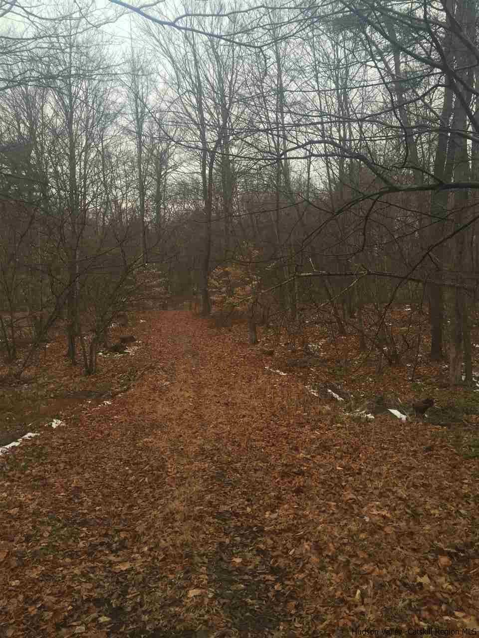 Additional photo for property listing at 70 Martin Sweedish Road 70 Martin Sweedish Road Rifton, New York 12420 United States
