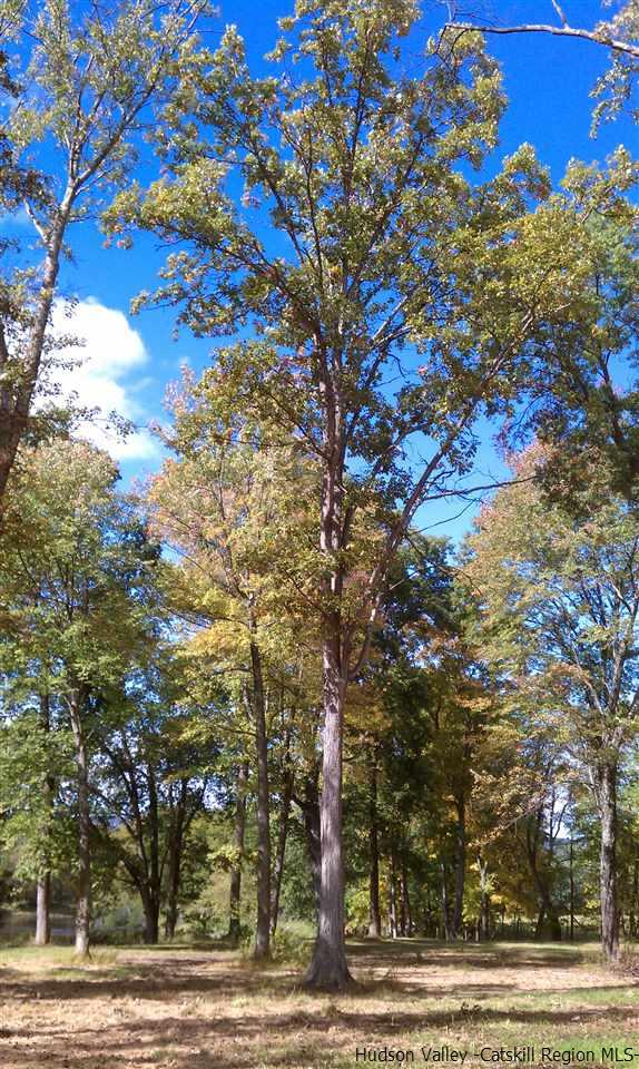 Additional photo for property listing at TBD CHURCH FARM Road TBD CHURCH FARM Road Gardiner, New York 12525 United States