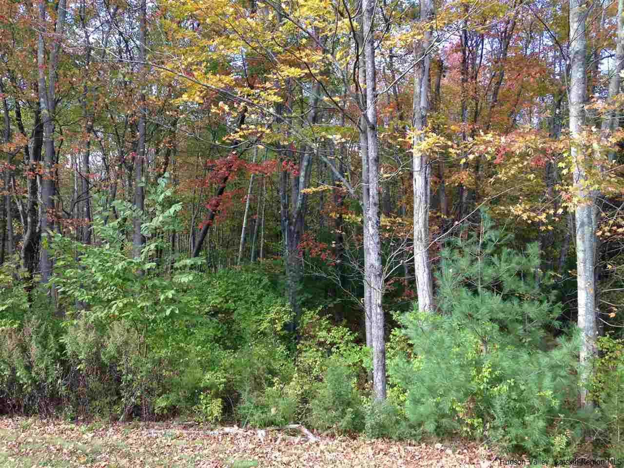 Additional photo for property listing at Glasco Turnpike Glasco Turnpike Saugerties, New York 12477 United States